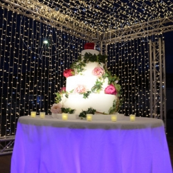 """Cutting cake blue lights • <a style=""""font-size:0.8em;"""" href=""""http://www.flickr.com/photos/98039861@N02/32319493604/"""" target=""""_blank"""">View on Flickr</a>"""